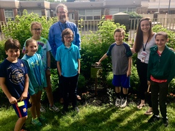 "Penn Valley's Environmental Club works to ""bring back the pollinators"""