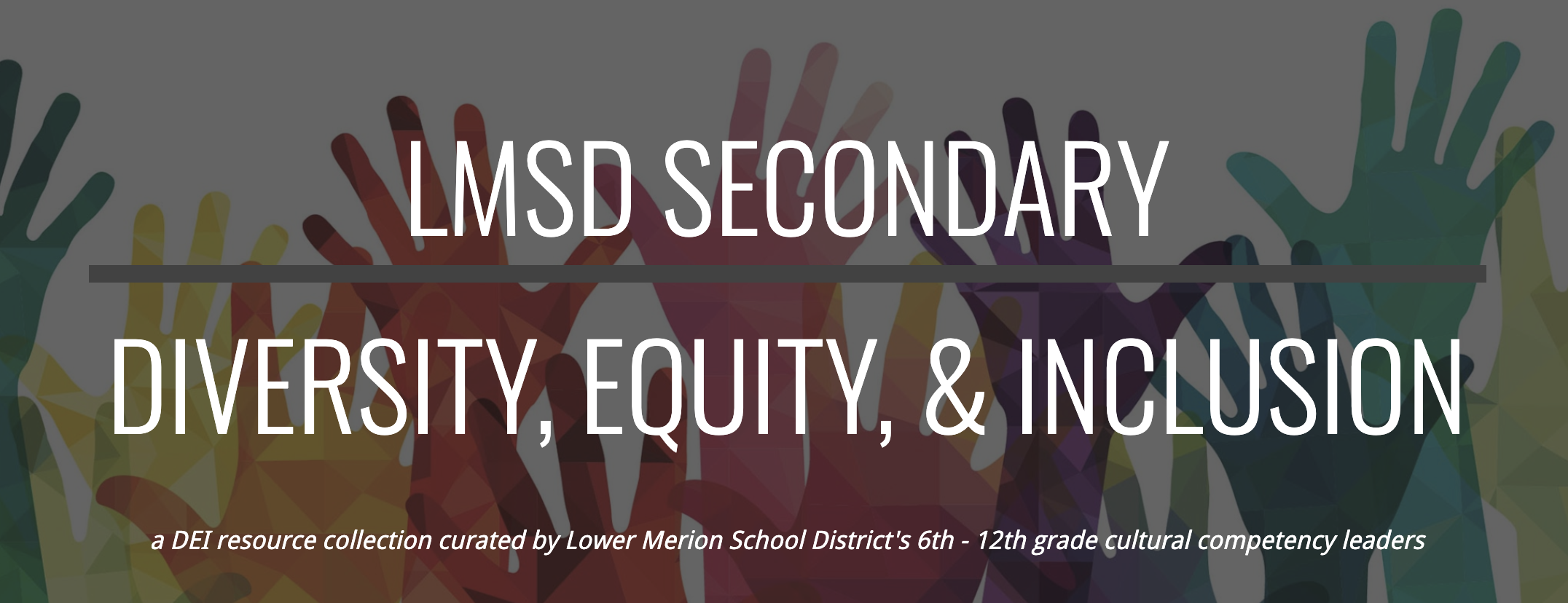 LMSD Secondary Diversity, Equity & Inclusion